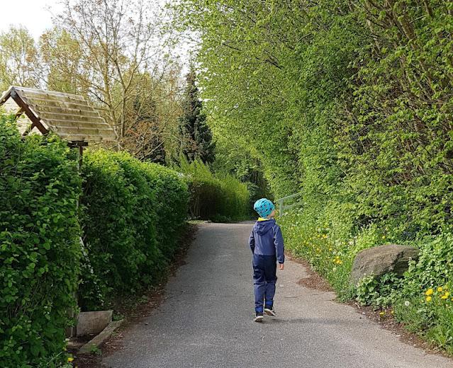 Küsten-Spaziergänge rund um Kiel, Teil 6: Der Rundweg um den Langsee. Sehr gut geeignet für Familien mit Kindern, die Wege sind auch mit dem Kinderwagen bzw. Buggy befahrbar.