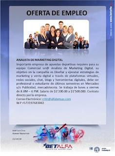 Oferta de Trabajo y Empleo en Cali como Analista de Marketing Digital