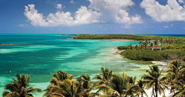 isla-contoy-arrecife