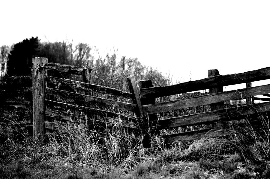 Blog + Fotografie by it's me! - fim.works - Magische Mottos - Strukturen & Rhythmen - SchwarzWeissBlick No 2 - verfallenes Gatter