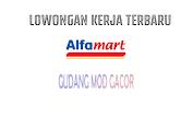 Loker Crew Store Alfamart Medan Terbaru Juni 2021