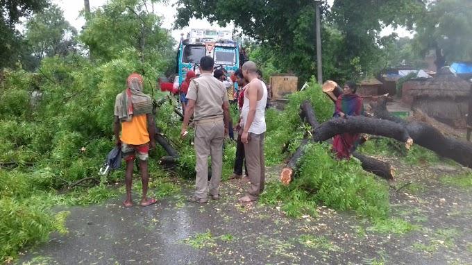 आफत की बारिश : कहीं उखड़े पेड़ तो कहीं जलमग्न हुए गांव
