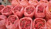 Sayur Grosir Makassar Pemesanan Sayuran Secara Online