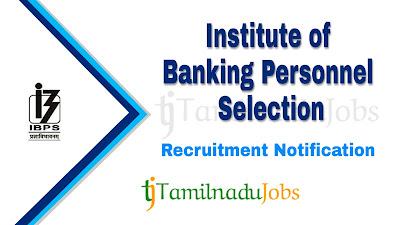 IBPS recruitment notification 2019, govt jobs in graduate, Central govt jobs, banking jobs, bank jobs, govt jobs in India