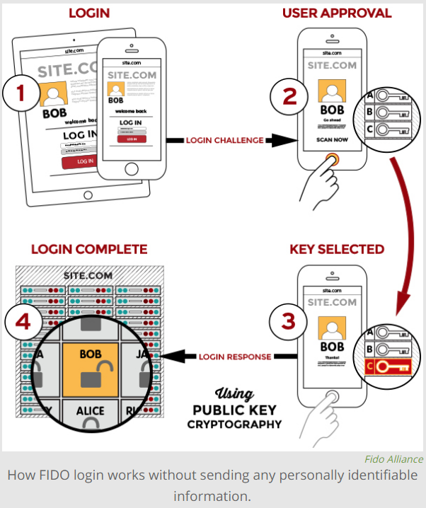 How fingerprint scanners work: optical, capacitive, and ultrasonic