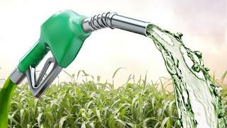 Pesquisadores da UFPB criam combustível verde a partir da palha da cana-de-açúcar