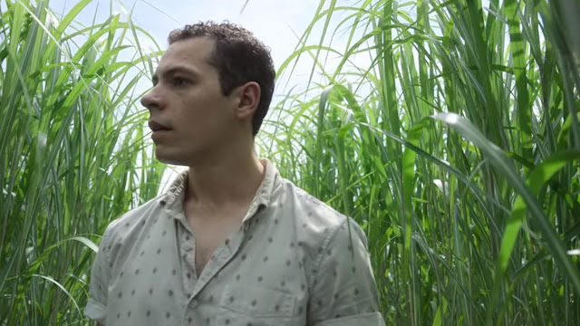 Guy wearing white shirt wandering in the tall grass