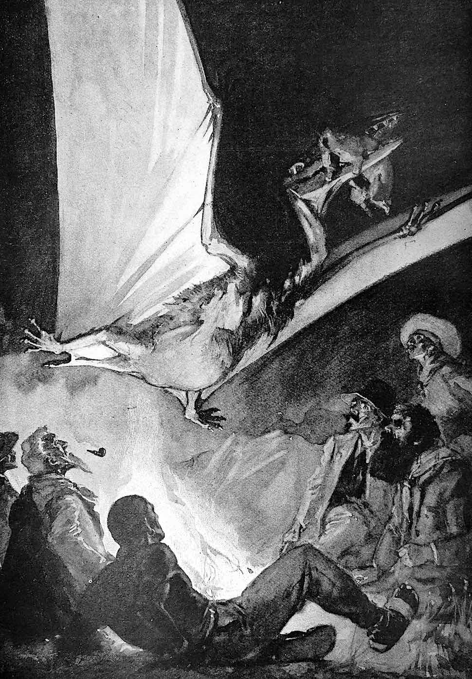 a Harry Rountree illustration of a Pterodactyl
