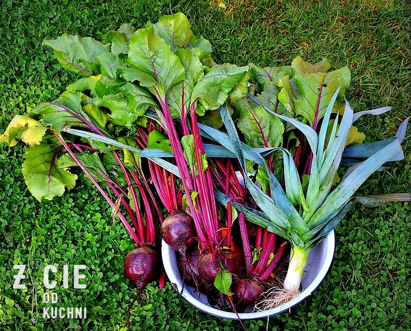 buraki, warzywa z ogrodu, ogrod, warzywnik, zupa, barszcz, blog, zycie od kuchni