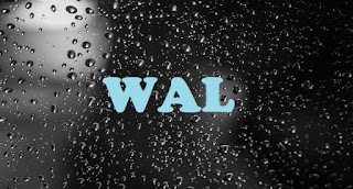 What does WAL Mean? - Meaning of WAL