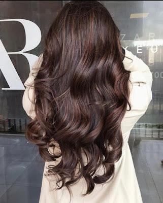 Warna Rambut Dark Chocolate Brown