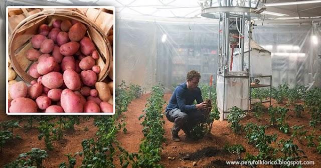 La papa peruana será el primer alimento cultivado por los astronautas en Marte [VÍDEO]