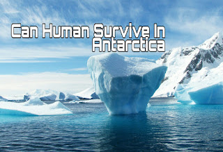 Can Human Survive In hot temperature of Antarctica?