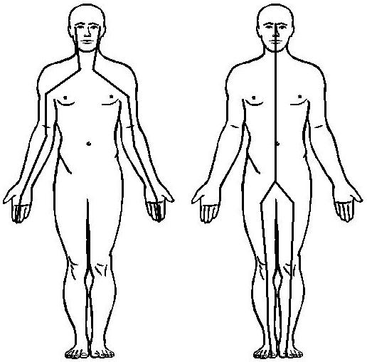 ejes verticales técnica de relajación guiada