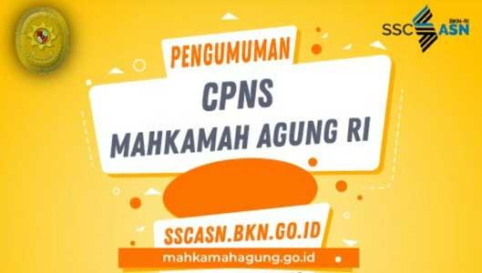 Alasan Mengapa Lolos Passing Grade SKD CPNS 2019 Belum Tentu Bisa Ikut Tes SKB
