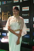 Lakshmi Prasanna in Transparent Saree Spicy Sleeveless Choli at IIFA Utsavam Awards 2017  Day 2  Exclusive 14.JPG