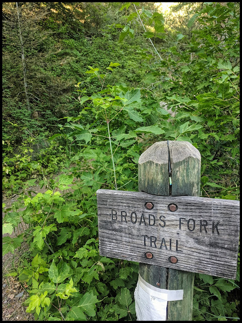 Broads Fork Trail Sign which is on the west side of the Lake Blanche Parking area  by the big S part of the road in Big Cottonwood Canyon.