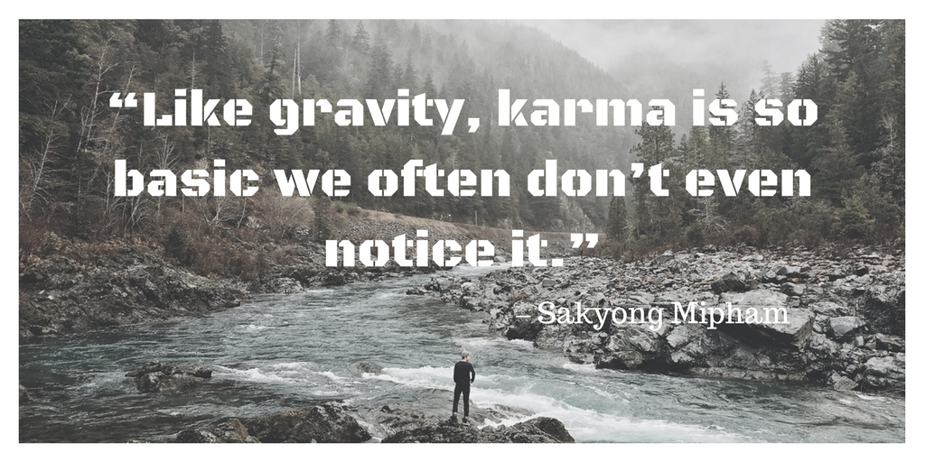 """Like gravity, karma is so basic we often don't even notice it."""