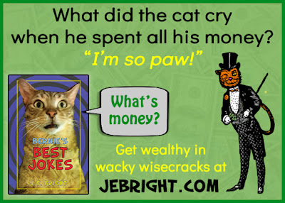 What did the cat cry when he spent all his money?