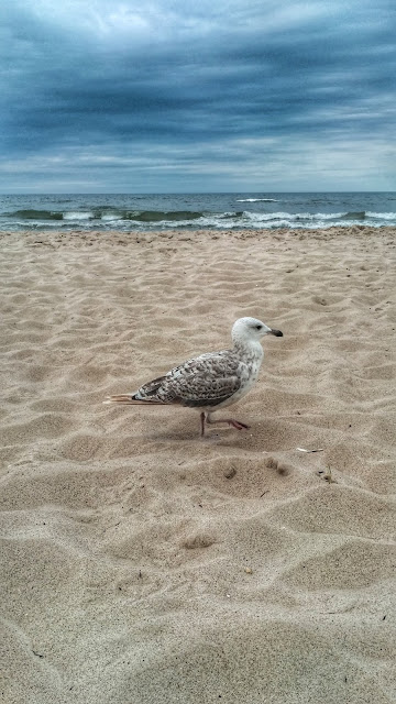 brak pogody Rewal, widok na plaże,