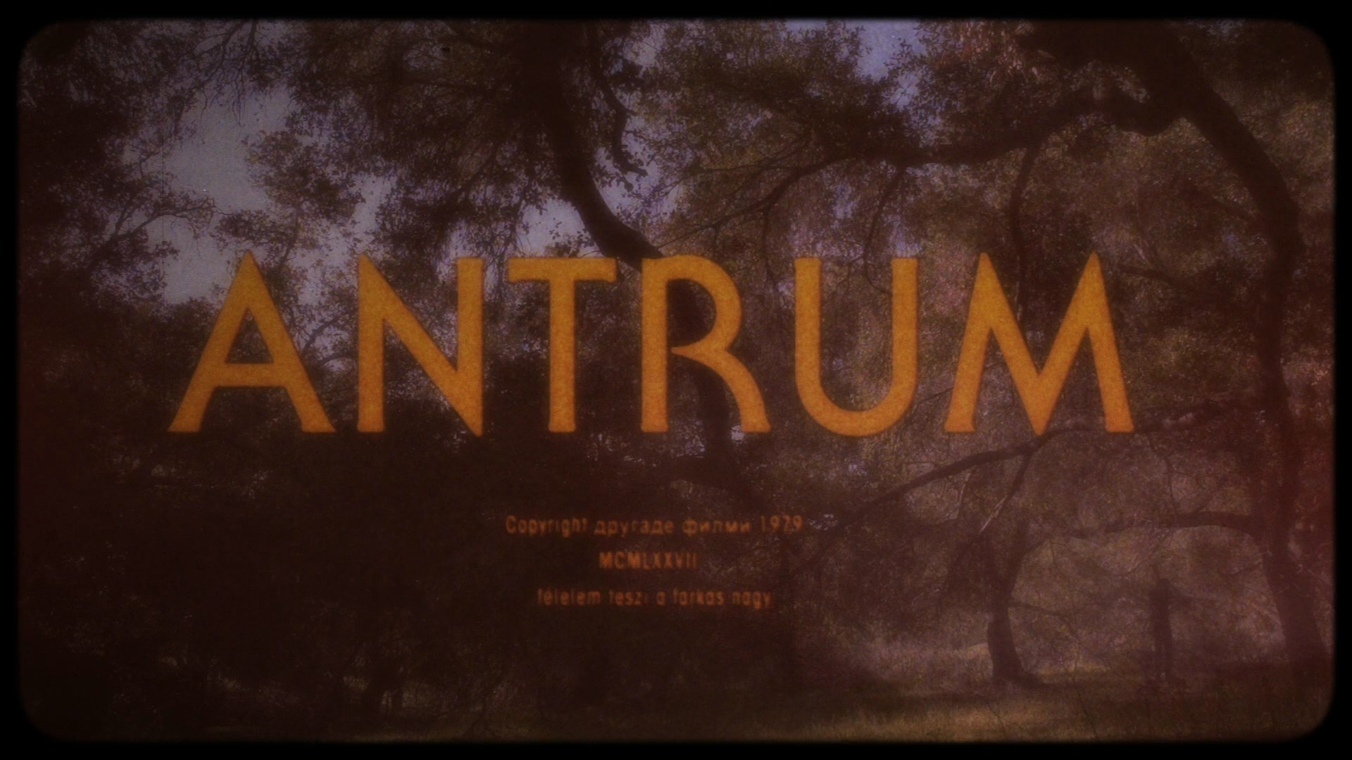 Antrum (2019) 1080p WEB-DL AMZN