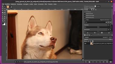 PhotoGIMP: la patch per rendere GIMP simile a Photoshop