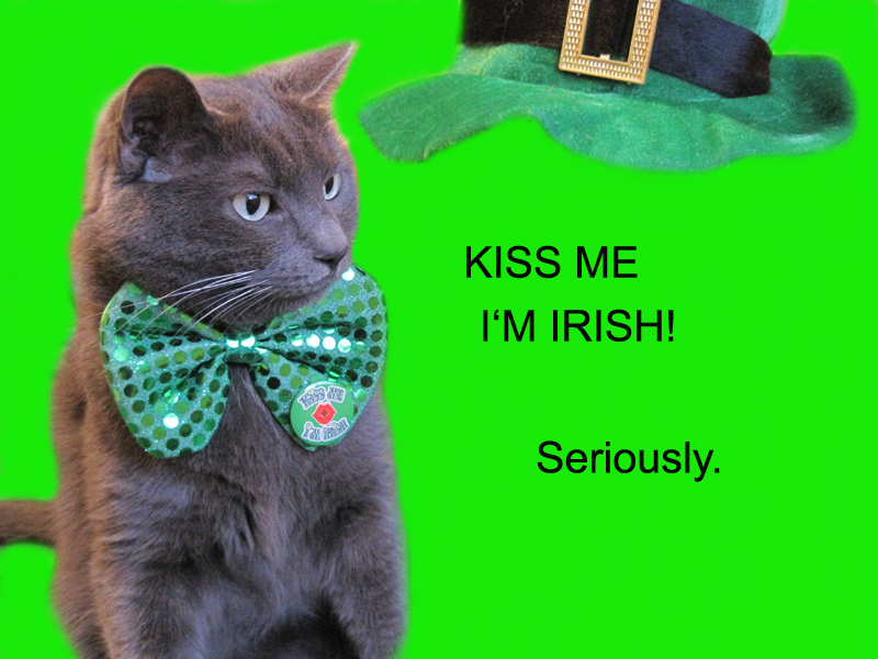 HAPPY ST. PADDY'S!...THANK YOU FOR VISITING!
