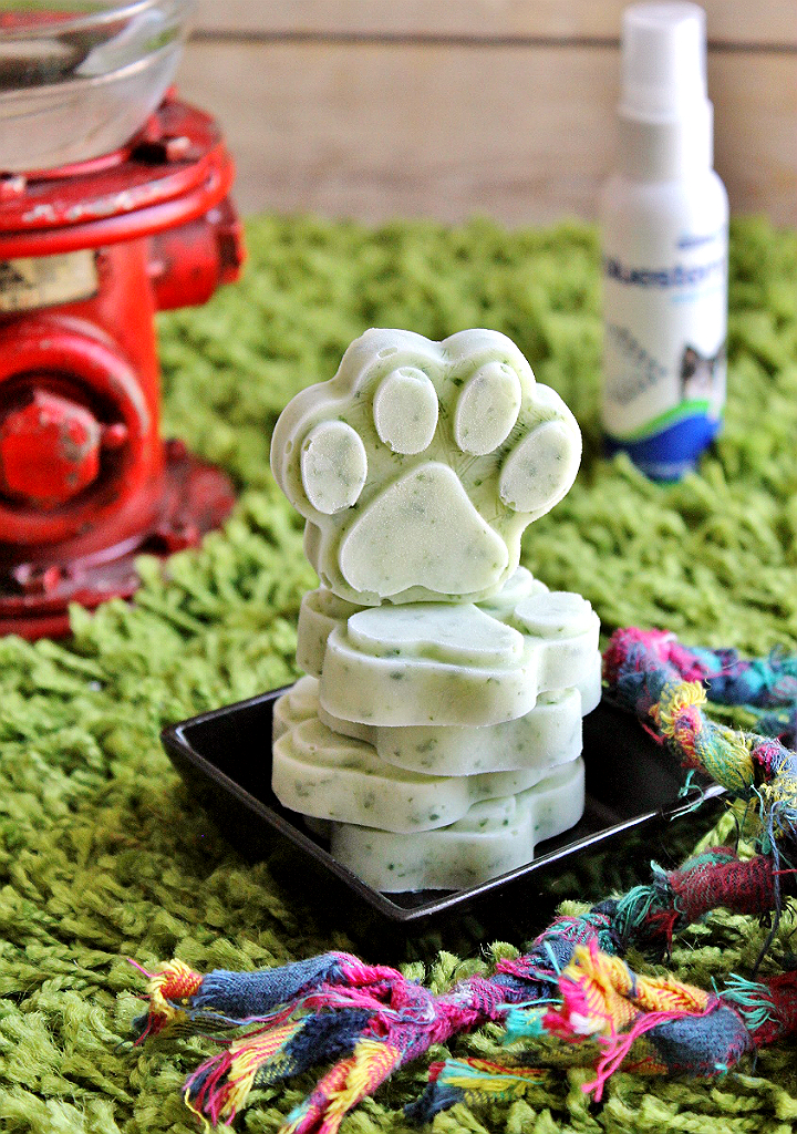 4 ingredient Mint Parsley Pup Treats can help fight bad breath. bluestem™ with coactiv+™ water additives and breath sprays can help fight tartar build up and bad breath in your dog. It's a fuss free way to help support healthy oral hygience! #bluestempets #ad