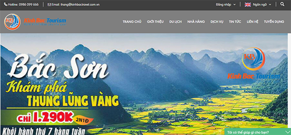 dich vu thiet ke website