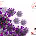 الصحة:تسجيل  124 حالة إيجابية جديدة لفيروس كورونا.. و 13 حالة وفاة