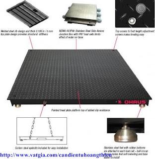 hệ thống cân sàn ohaus 1m x 1m