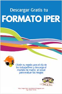 Formato IPER Excel