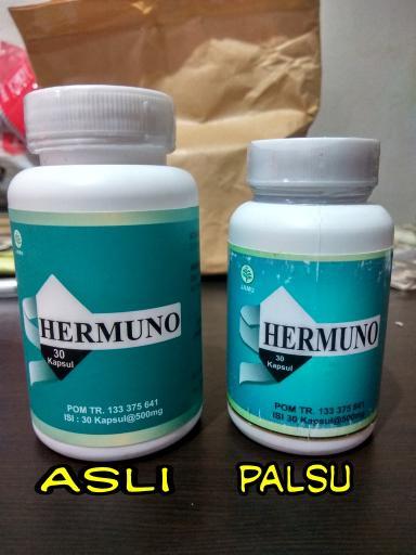 Hasil gambar untuk hermuno
