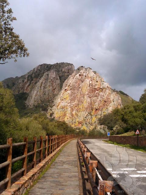 Espagne-Monfrague-saut-gitan-vautour
