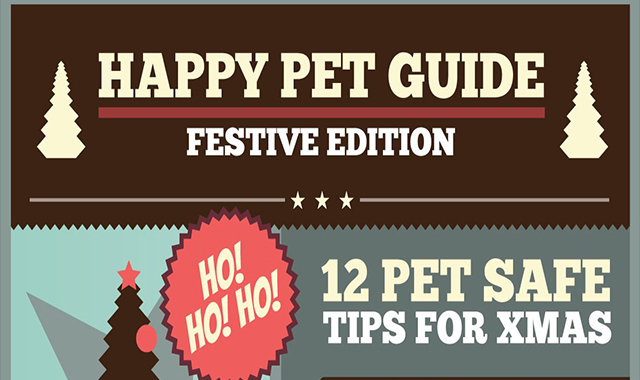 How To Happy Your Pets Full Guide