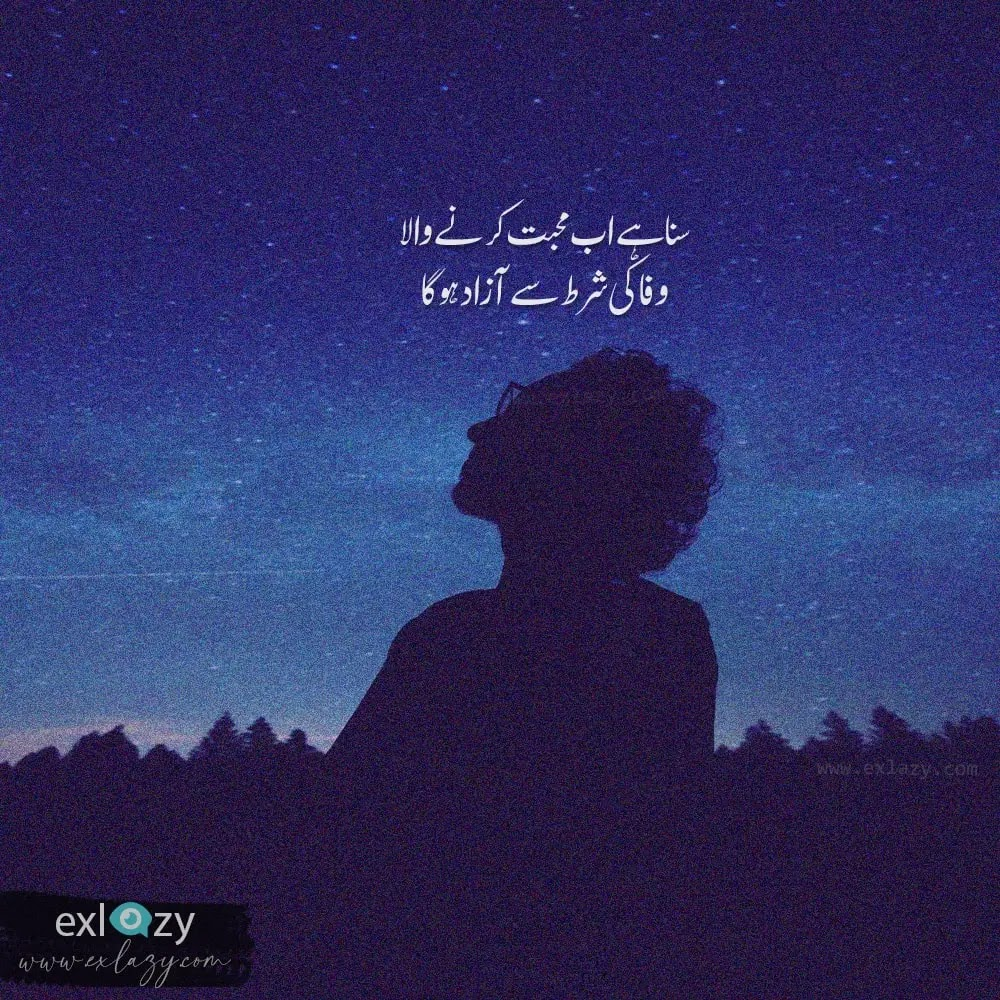 The Best 2 Line Urdu Poetry on Every Topic