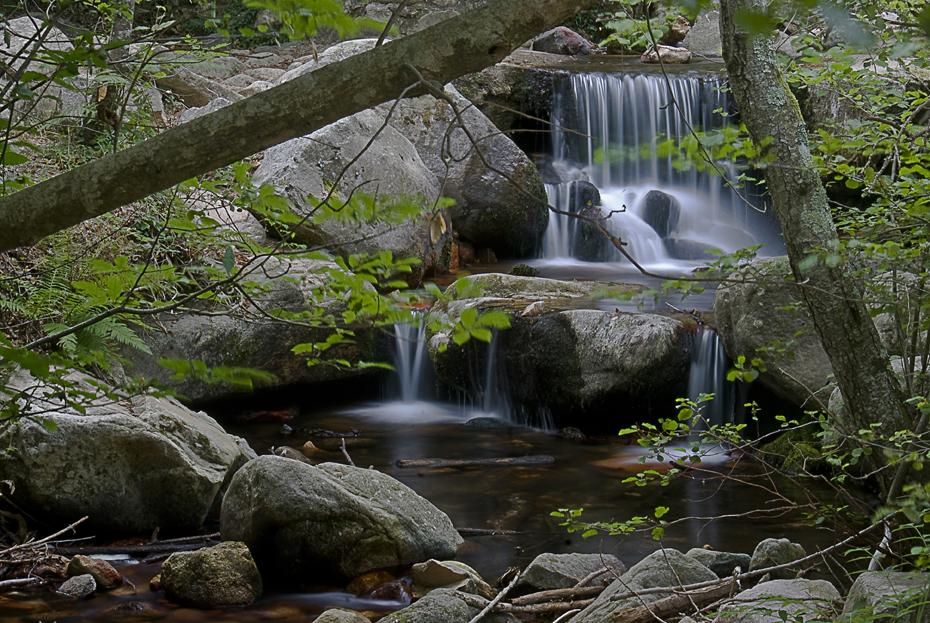 Colla perduts excursi diumenge 7 desembre 2014 for Les piscines del montseny