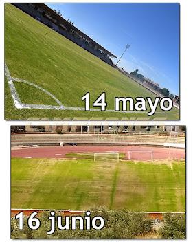 Césped Estadio El Deleite Aranjuez