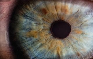 صوره مقربه للعين تظهر الاجزاء المكونه للعين بما فيها القرنيه المسؤله عن انفاذ الشعاع البصرى