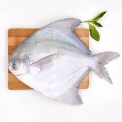 Promret Fish