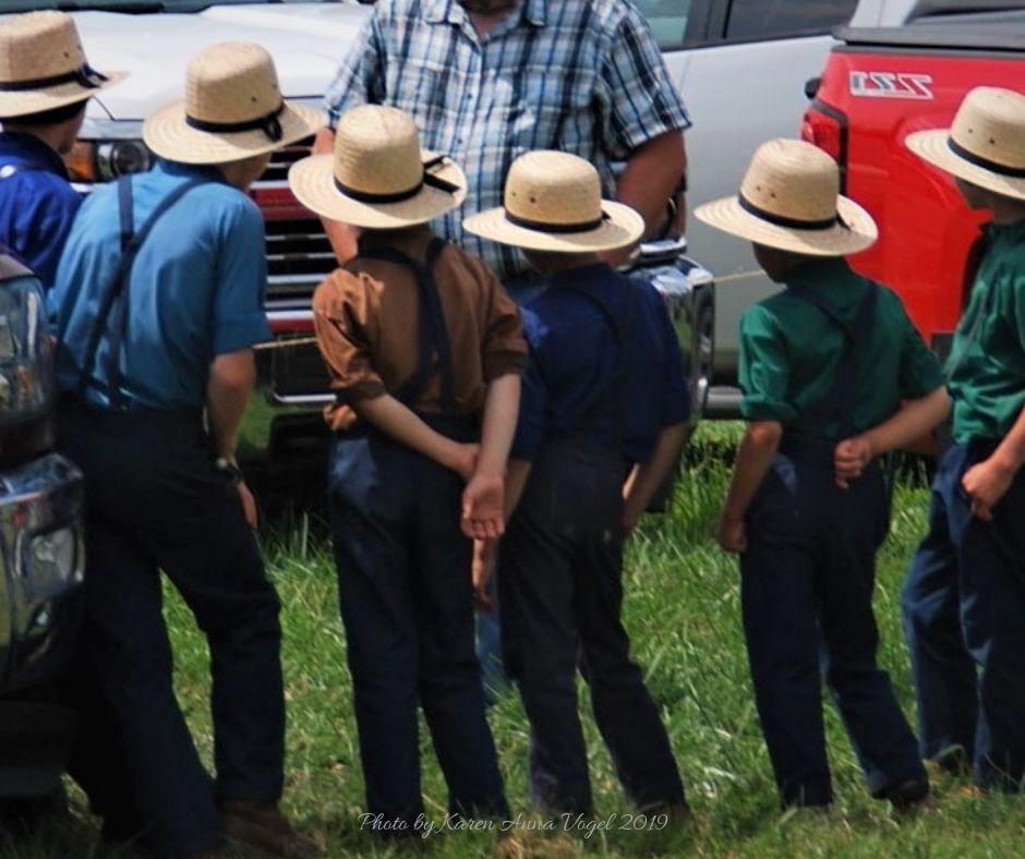 Amish Crossings with Karen Anna Vogel