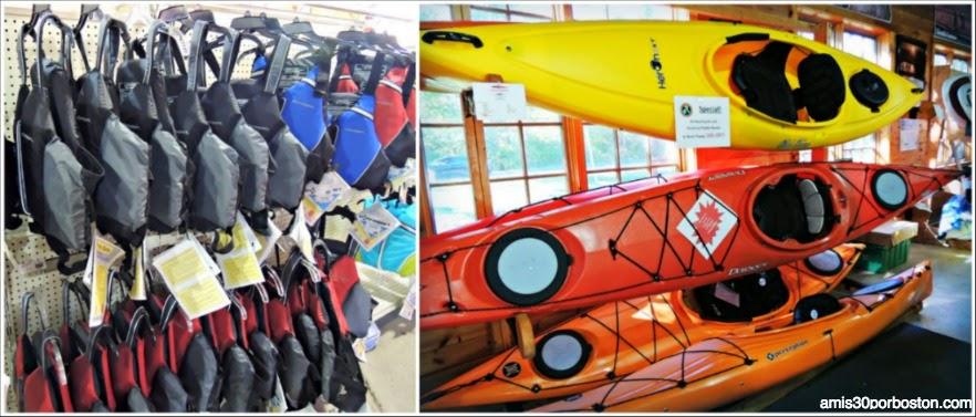 Cosecha De Arándanos en Wareham: Canoas