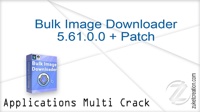 Bulk Image Downloader 5.61.0.0 + Patch