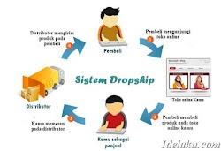Cara Memulai Bisnis Dropship Untuk Pemula