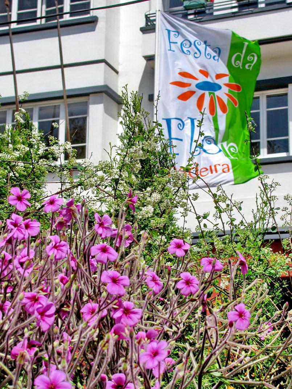 Flower Festival 2010