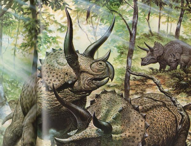 Love In Time Of Chasmosaurs Vintage Dinosaur Art De