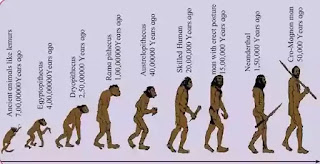 Class 10 chapter 1 heredity and evolution textbooks solutions