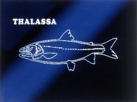 Le Dr Phil Show attraper poisson-chat en ligne datant prédateur