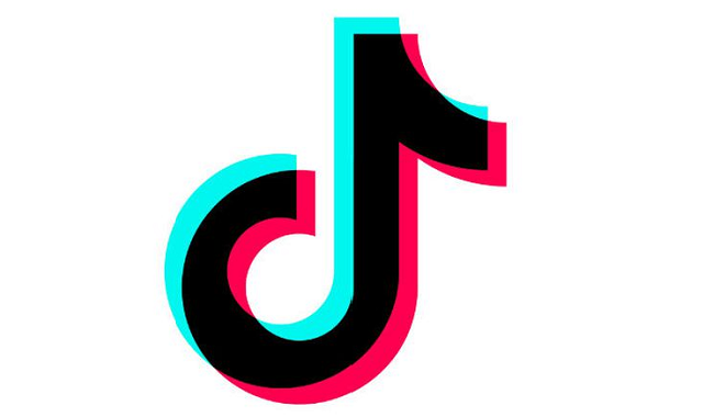 TikTok launches an in-app election guide for users