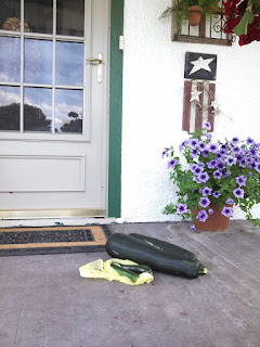 A large green zucchini on the ground in front of a white door with green trim. There is bush with purple flowers on the right.